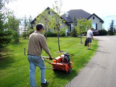Yard & Lawn Maintenance Calgary: Canada Yard Pro